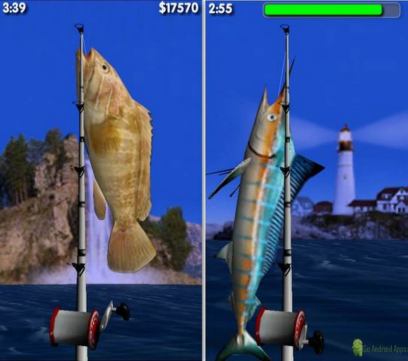 Big Sport Fishing