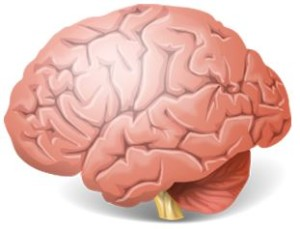 IQ tests & Personality
