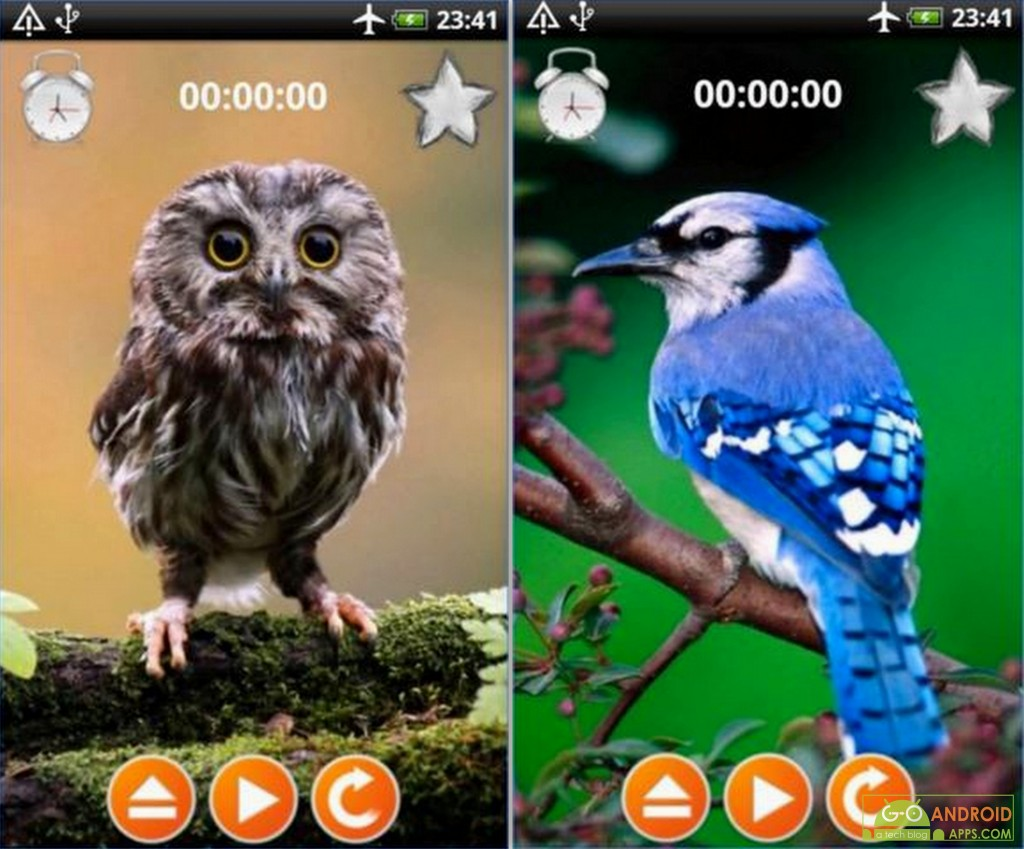 Birds Sounds Relax and Sleep App