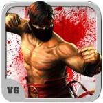 Kung Fu Vovinam