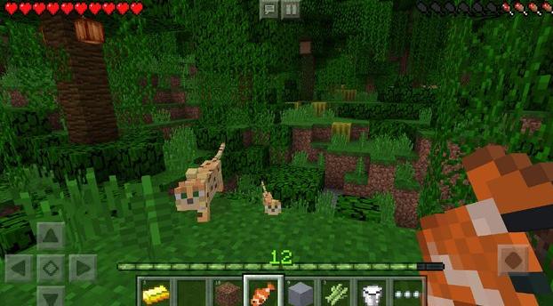 Minecraft APK 2018 Update Released - AppInformers.com